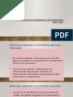 PATOLOGIA QUIRURGICA DE INTESTINO DELGADO UANCV