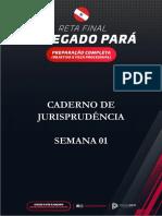 PA_-_CADERNO_DE_JURISPRUDENCIA_-_SEMANA_1