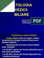 Proca 2012 Patologia Vezicii Biliare318397015
