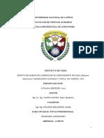 EFECTO DE HUMUS DE LOMBRIZ EN EL RENDIMIENTO DE PAPA (Solanum tuberosum) VARIEDADES CANCHAN Y UNICA, EN CAÑETE, 2020