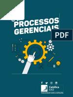eBook UCB EAD Processos Gerenciais