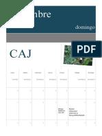 CAJ noviembre calendario
