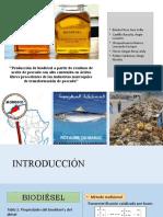 Grupo2 Producción de biodiésel a partir de residuos de aceite de pescado con alto contenido en ácidos grasos libres procedentes de las industrias marroquíes de transformación de pescado