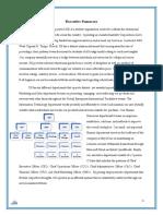 ssi - executive summary