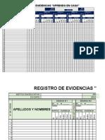 REGISTRO DE EVIDENCIAS - 2020
