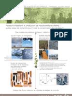 Facteurs impactant la production de mycotoxines au champ
