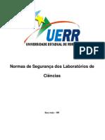 normas_seguranca_lab_cienc[1]