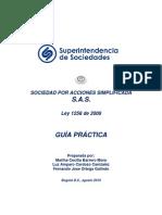 guía práctica CARTILLA S A S