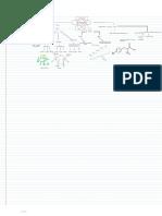 bio task pdf