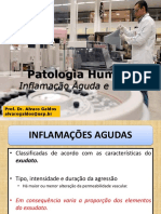 Aula 7 - Inflamação aguda e crônica