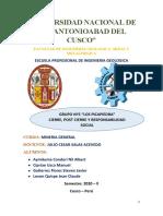 Informe Mineria Cierre