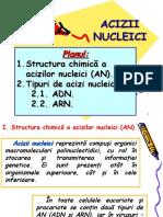 AAAcizii nucleici