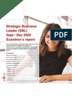 SBL SD20 examiner's report