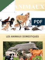 Les animaux PPT