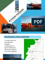 dokumen.tips_actividad-pesquera