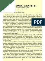 Almanah Anticipaţia 1996 - 11 Dănuţ Ungureanu - Anatomic Grafitti 2.0 ˙{SF}