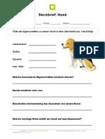 steckbrief-hund