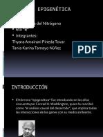EPIGENÉTICA-PPT (1)