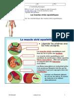 nanopdf.com_le-muscle-strie-squelettique