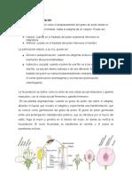 Polinización y fecundación