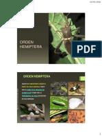 PDF Clase de Hemiptera (1)