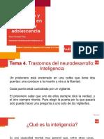 Inteligencia presentacion(1)