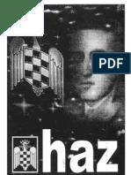 haz-fei-07