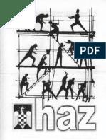 haz-fei-09