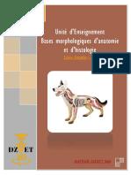 S5 - Bases Morphologiques d'Anatomie Et d'Histologie-DZVET360-Cours-veterinaires