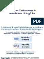 3_ Trasporti di membrana