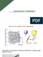 Membrane cellulari