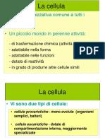 Lezione 3 m.citoplasmatica Trasporti Pompe