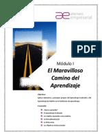 2FAE-Manual Participante-M1-El Maravilloso Camino del Aprendizaje vdef