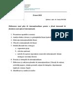 Cerințe proiect REI