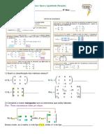 20 Exercícios Matrizes tipos e igualdade fixação 29102020