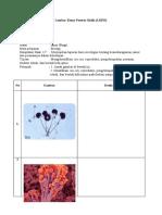 LKPD Identifikasi jamur