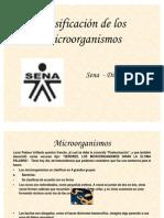 CLASIFICACION.MO (2)