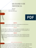 SISTEMA BASICO DE RESISTENCIA GRUPO 1