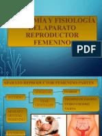 Fisiologia Del Sistema Reproductor Femenino