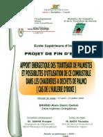 Page garde_PFE Briand Alain_Apport énergétique du tourteau de palmiste