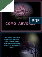 COMO ARVORES_SOM