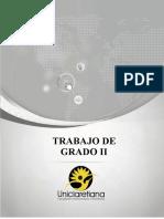 Guía Trabajo de Grado II