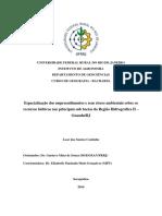 Artigo - Espacialização Dos Empreendimentos e Seus Riscos Ambientais Sobre Os Recursos Hídricos Nas Principais Subbacias Da Região Hidrográfica II
