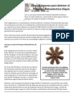 Phd Volante Terraba02