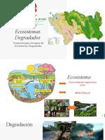 Mapa de Ecosistemas Degradados_2019