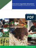 Dimensiones Seguridad Alimentaria FINAL Web-2