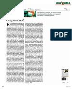 COLUMNAS POLÍTICAS 27 11  2020