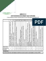 Anexo 06 - Capacitacion Basica SST 023
