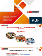PPT-  REMYPE