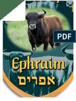 estandarte tribo Efrayim-Doc46